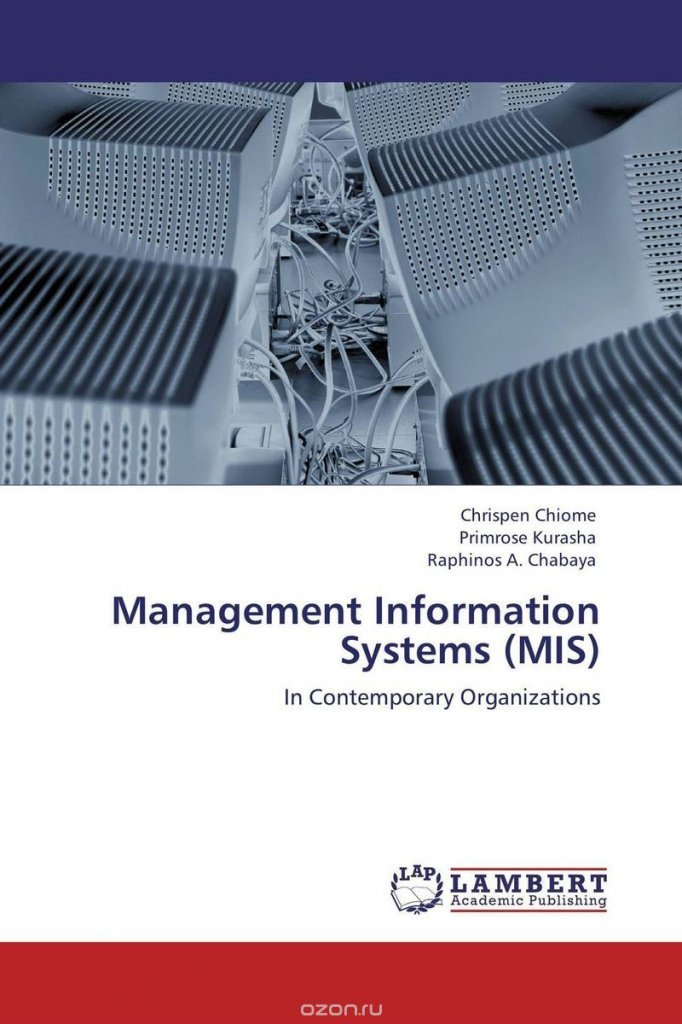 a management information system mis