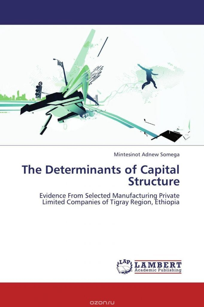 capital structure determinants Determinants of the capital structure of small and medium sized brazilian enterprises potential determinants of us determinants of the capital structure.